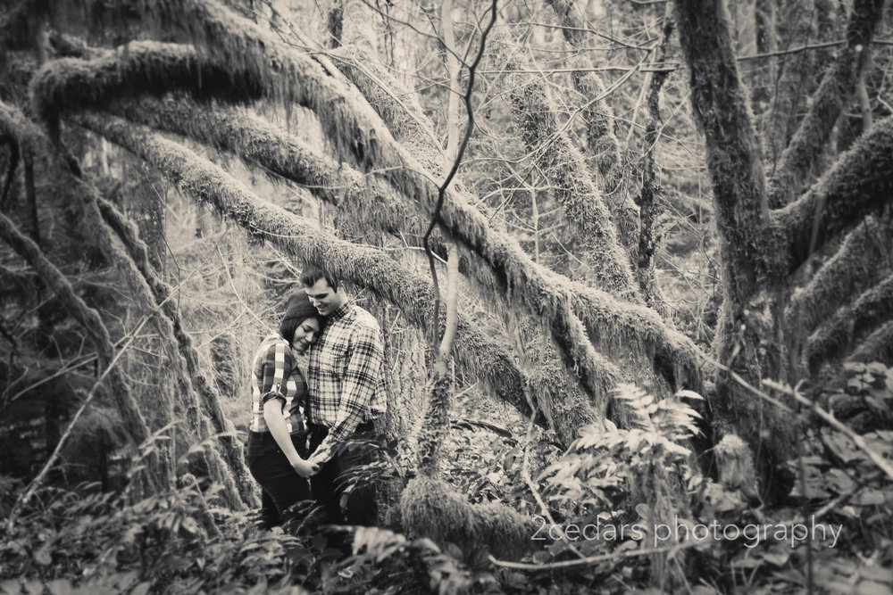PNW Forest Couple Engagement