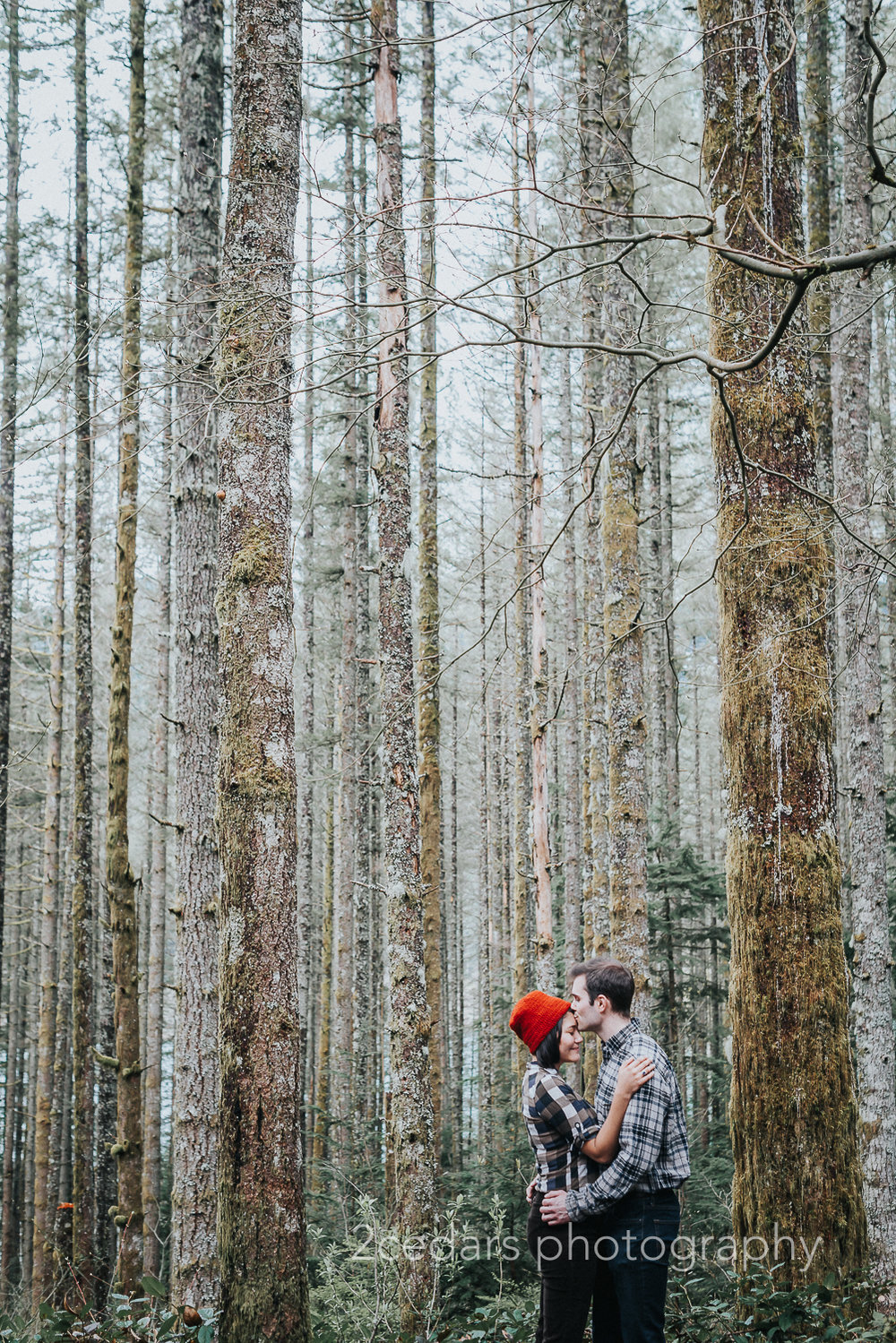 Pacific Northwest Forest Engagement Photo