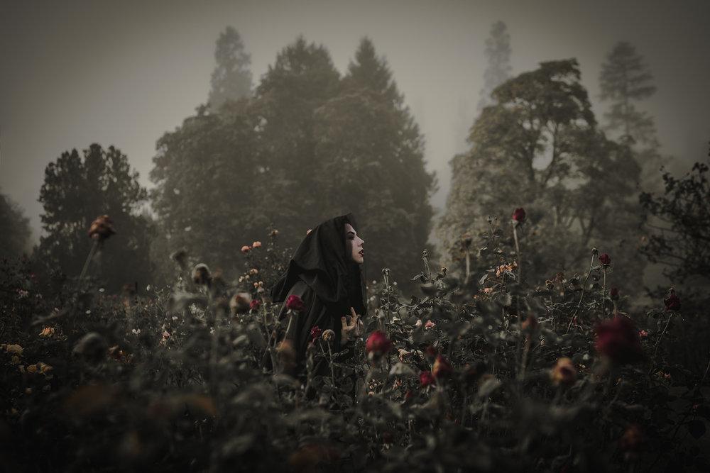 sarahbsmithart-dreams-ghosts--5.jpg