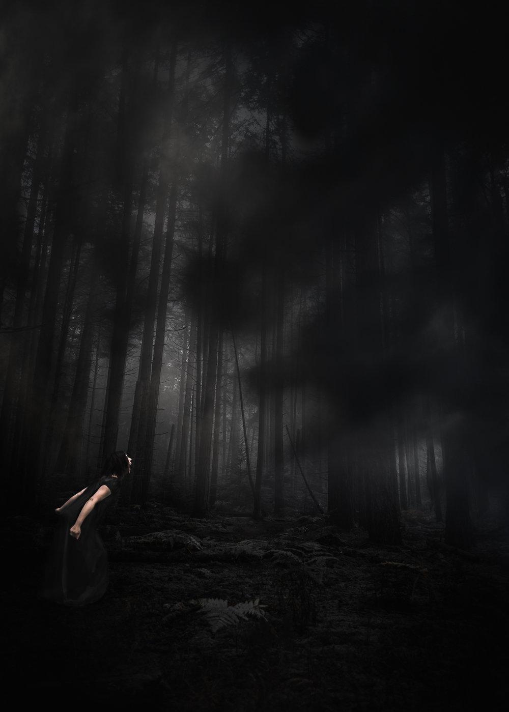 sarahbsmithart-dreams-ghosts--6.jpg