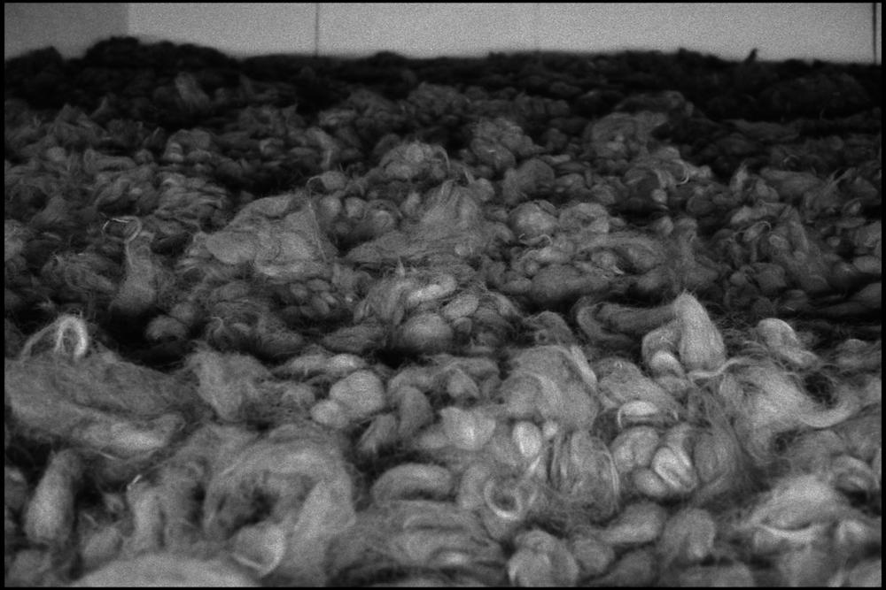 Auschwitz 003.jpg