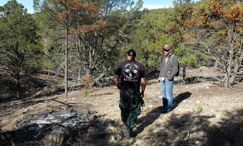 The City of Santa Fe, a Coalition partner, leads a field trip into the fireshed to view a recent pile burn site.