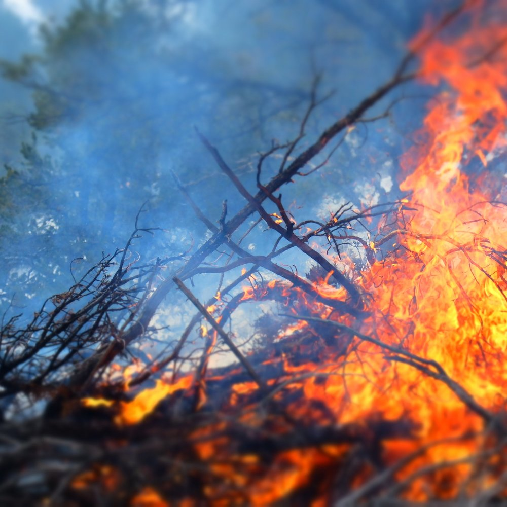 A prescribed pile burn in the Aztec Springs Neighborhood up Hyde Park road.
