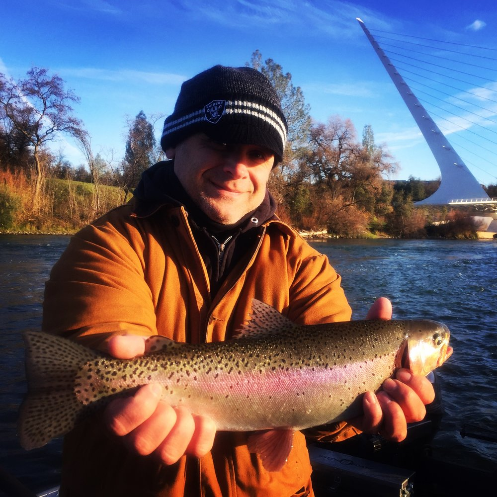 Chuck Steen holds a nice Sac River steelhead above Sundial Bridge in Redding, Ca.