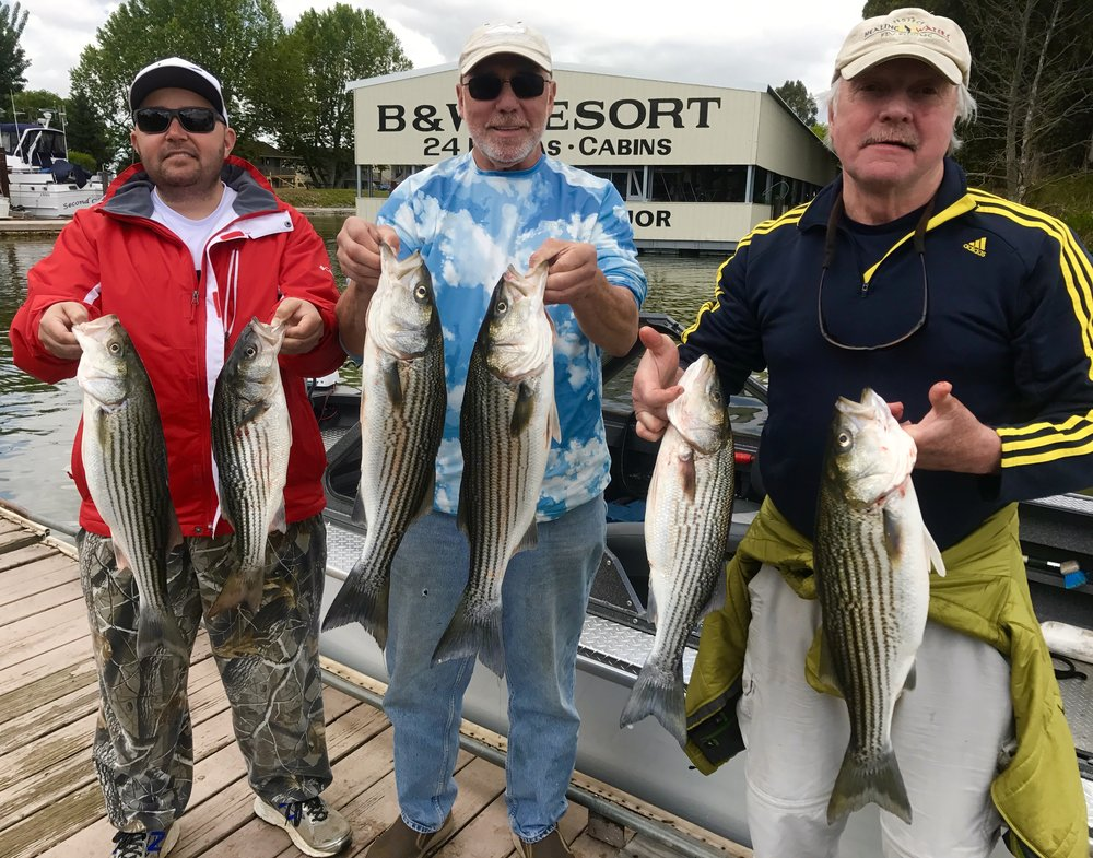 Great day in the Delta with this group. They landed and released double digit keepers and shakers, but kept some limits for fish taco's!