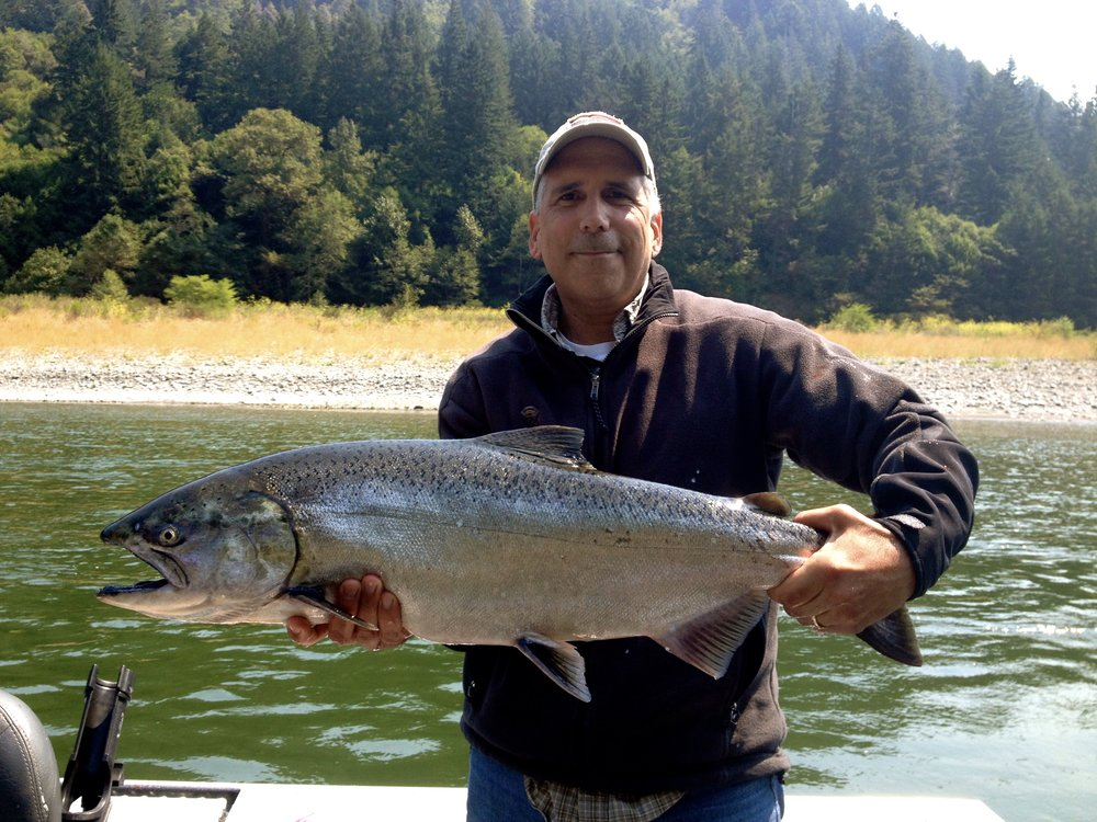 Silver bright King salmon on the Klamath River!