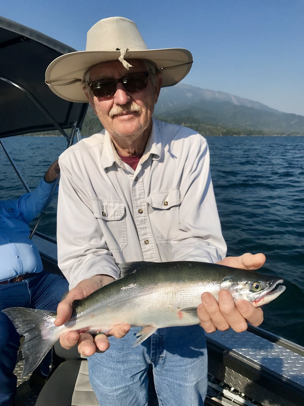 Whiskeytown Lake Kokanee salmon are beautiful this year!