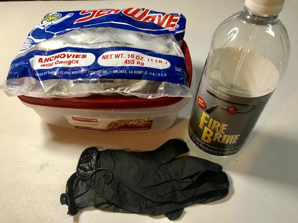 Anchovies, Pautzke Fire Brine, plastic container, and rubber gloves.