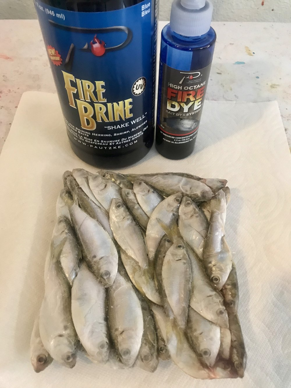 A few dozen frozen Shad, Pautzke Fire Brine, and Pautzke Fire Dye are the three things needed for this short tutorial.