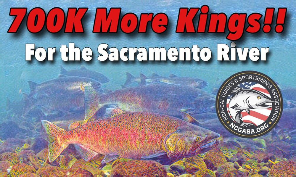 Good news from the President of ncgasa.org, Capt. James Stone! Good things are happening at the hands of NCGASA and the sportsman's voice continues to make positive changes in our California fisheries! Please join us as we work towards better fishing and hunting in California! Join online @ ncgasa.org today!   Photo Credit: Capt. James Stone