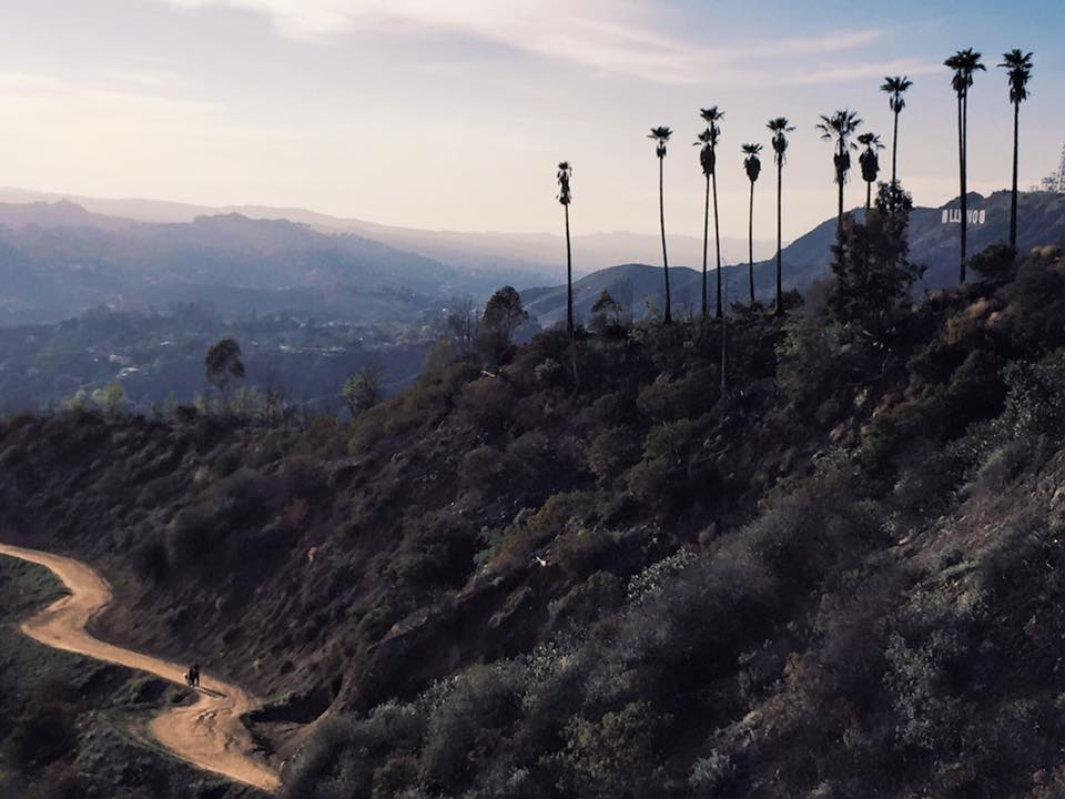 Griffith Park. Los Angeles.