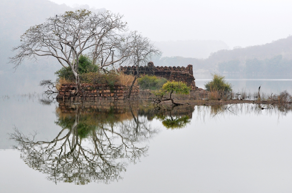 Ranthambore Lake, India