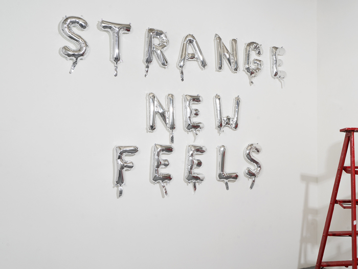Strange New Feels,  2015, collaboration with  C  laire Felonis