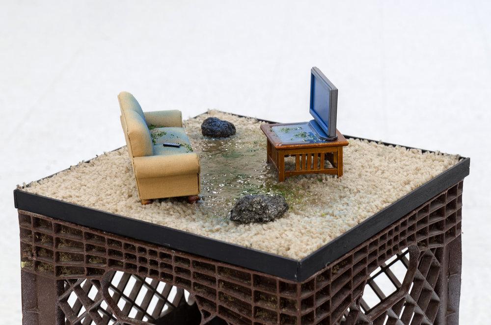 livingroomswamp_saragrose.jpg