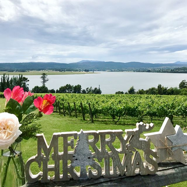 Feeling festive yet? We are certainly in the full swing of the fun of the Christmas party season. 🎄🎄🎄 #tamarvalley #weddingtasmania #discovertasmania . . . . #riverviews #wedding #tasmania #travelgoals #wine #celebrate #vineyard  #strathlynn #winetasting #tasmanianwedding #happenessis #christmasparty #tistheseason