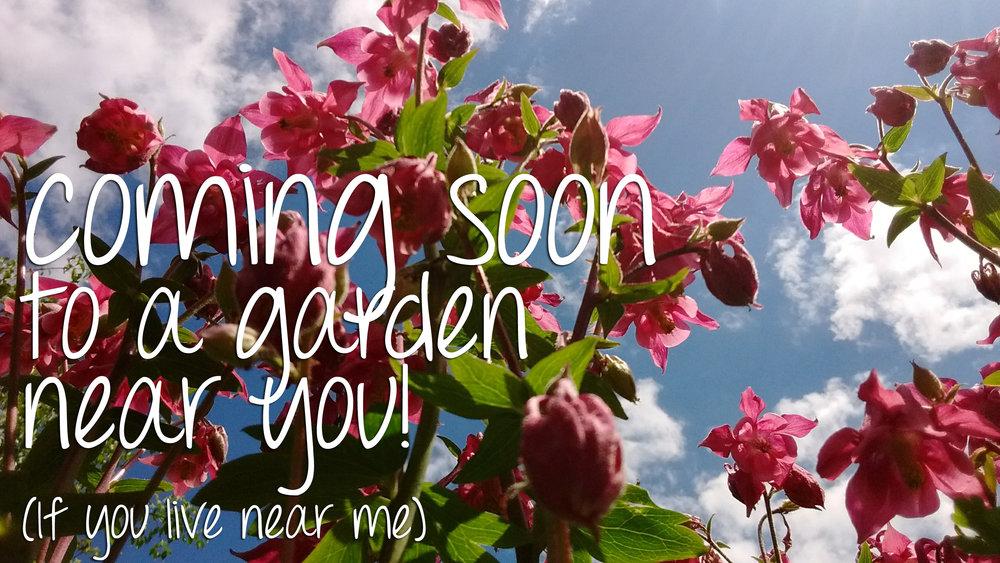 coming-soon-garden.jpg