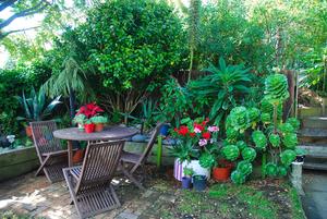 Garden+3-2.jpg