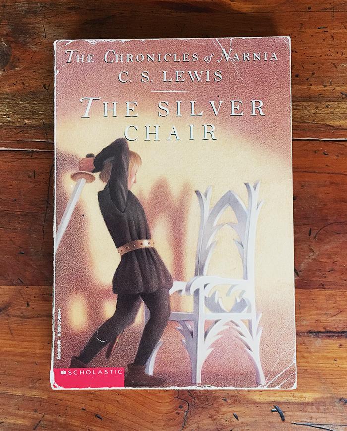 silver chair cover website.jpg