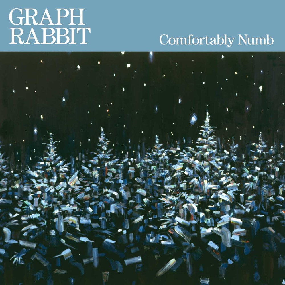 "Comfortably Numb Graph Rabbit Vinyl 12"" EP, Hi-Res, Digital"