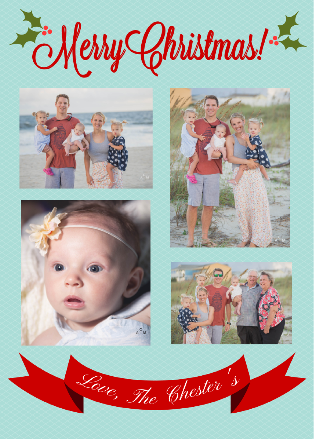 Barb's xmas card back (1).png