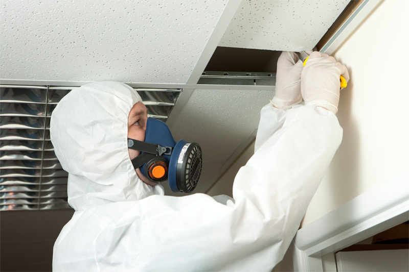 Image result for mold inspection