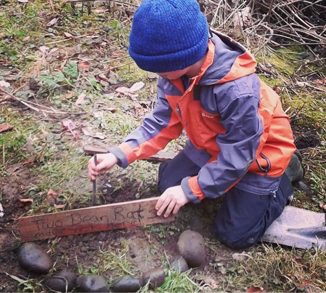 "Tender-hearted gesture for ""Two Dear Rats"" who needed burial. #friendtonature #rituals #funeral #lifecycle #respectforlife #naturelover #secondgrader #natureschool #rewildyourchild #rewild #farmschool #kidlife #motherearthschool"