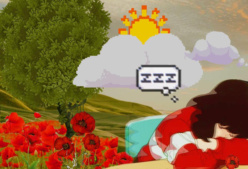 Robyn Ortiz [Fall/18]