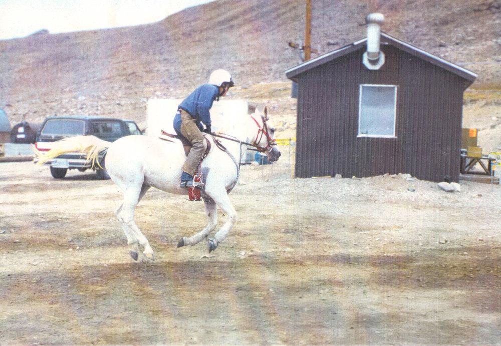 wmrs gallop web.jpg