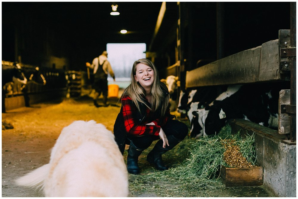 7 a.m. - at a beautiful farm with Brenna, her husband, some friendly cows, and a very, very good dog, Greendale.