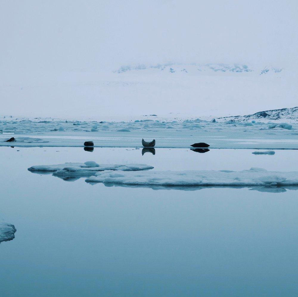 Jokulsarlon in Iceland by Joost Bastmeijer.jpeg