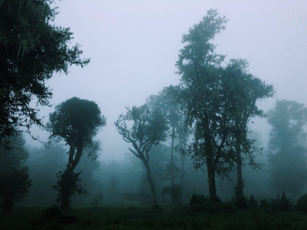 Chogoria mist Meru Kenya by Joost Bastmeijer.jpeg