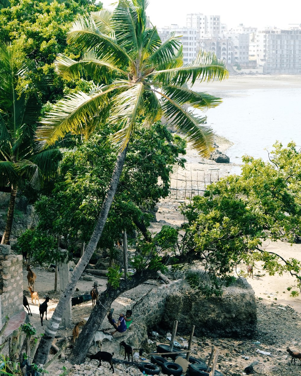 Mombasa by Joost Bastmeijer.jpeg
