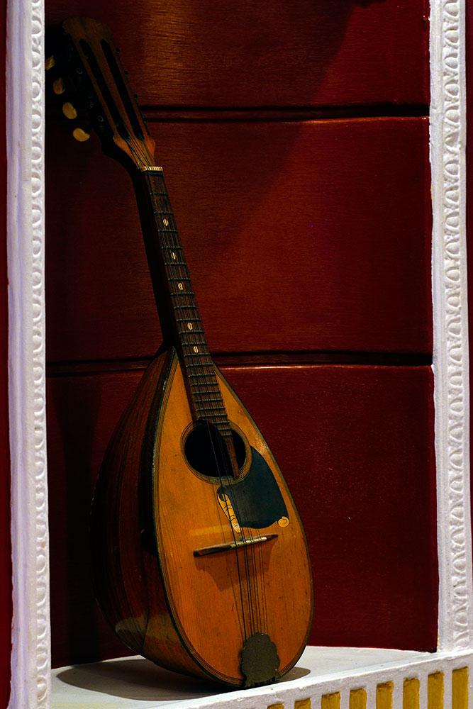 interior-mandolin-crop_web_DSC5936.jpg