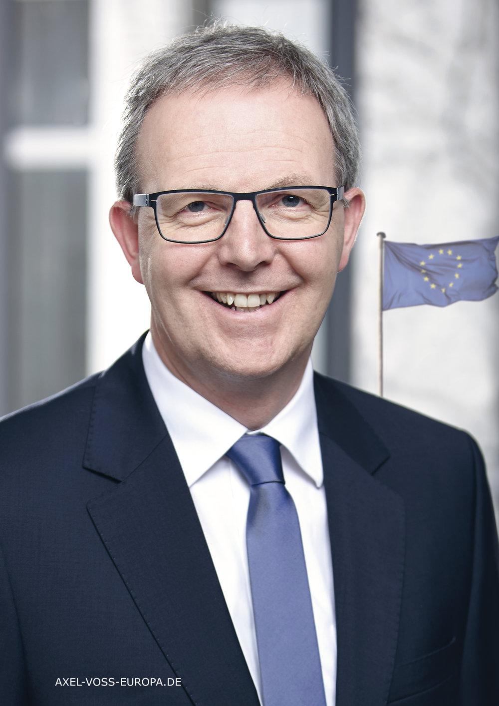 Axel Voss, Mitglied des Europäischen Parlaments