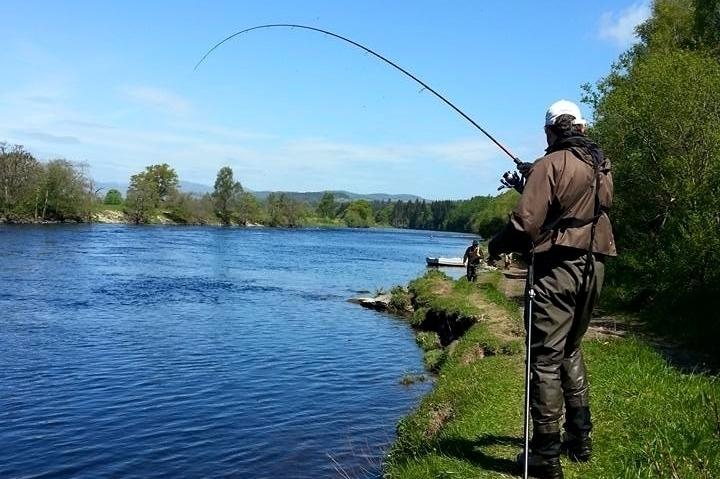 Salmon Fishing Scotland
