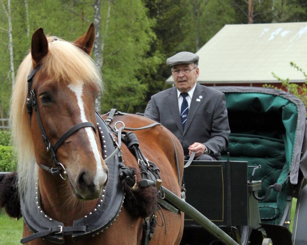 Kuvassa MTK 100 -työkonekavalkadin ensimmäinen hevonen, presidentti Tarja Halosen YpäjäTarja hoviohjastajansa Jari Ansion kanssa, Jari on Ypäjän Tarjan mukana myös kulkueessa.