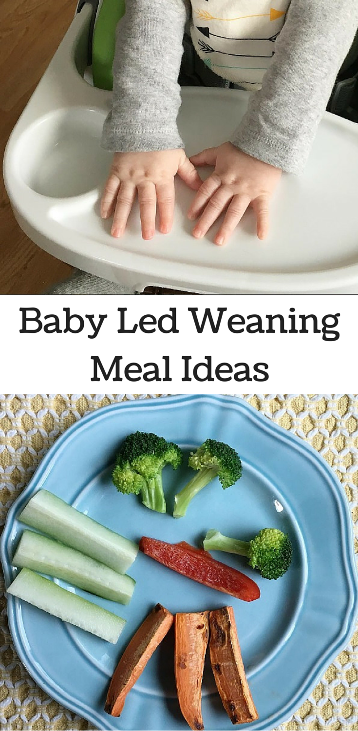 Baby Led WeaningMeal Ideas
