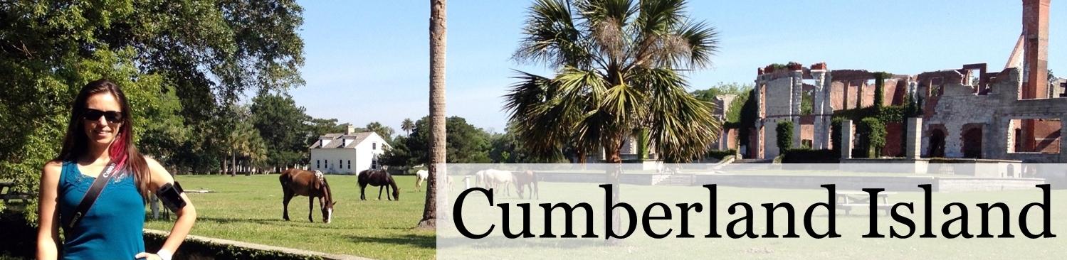 Cumberland Island (2)
