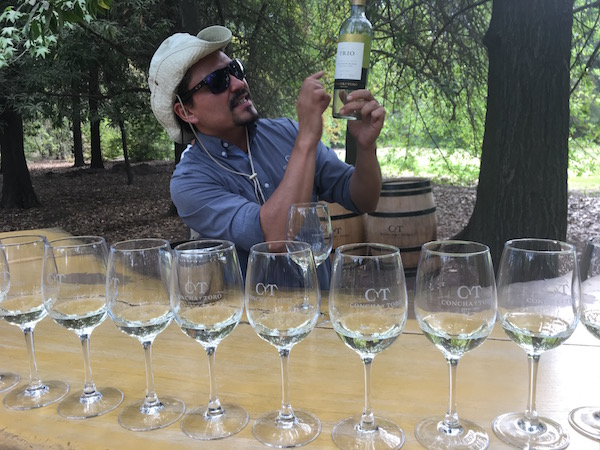 """Our tour guide at Concha y Toro Winery just outside Buenos Aires. We enjoyed the Casillero del Diablo rose as our """"house wine"""" while we were in Santiago."""