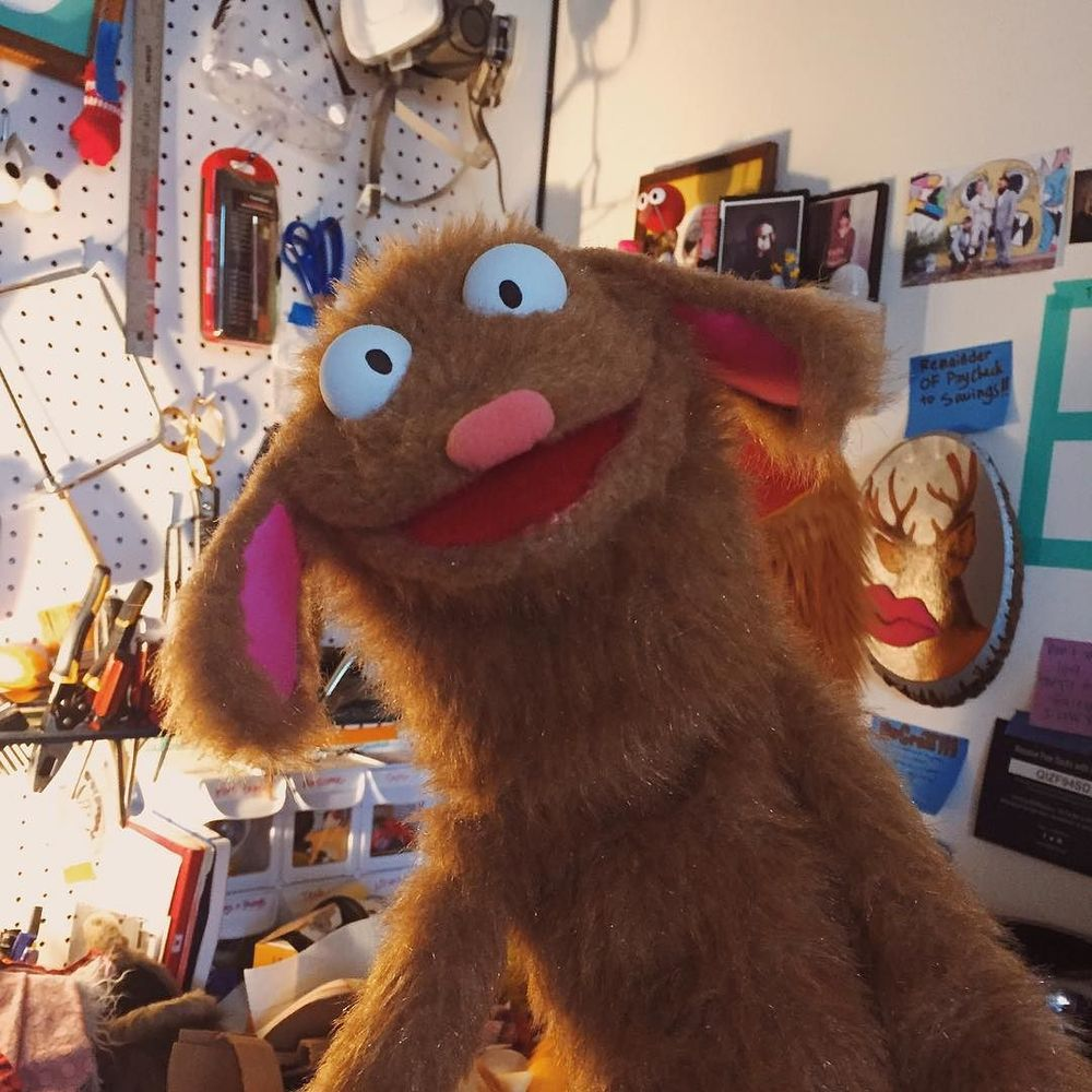 Hold up, let me take a #selfie. #Puppet http://ift.tt/24hpPMb