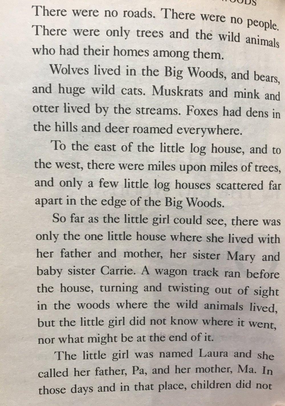 Little House Excerpt 2.JPG