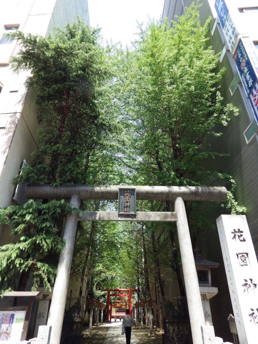 Kabukicho_085_3x4.jpg