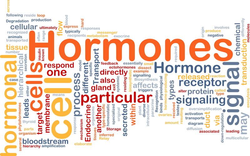 hormone-replacement.jpg