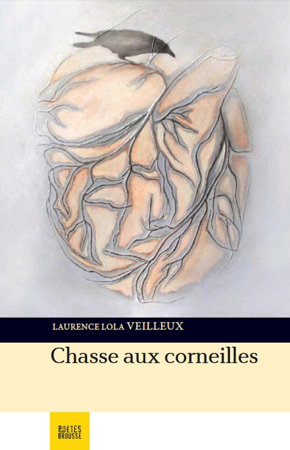 Copy of Chasse aux corneilles