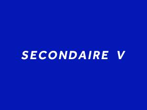 sec v.jpg