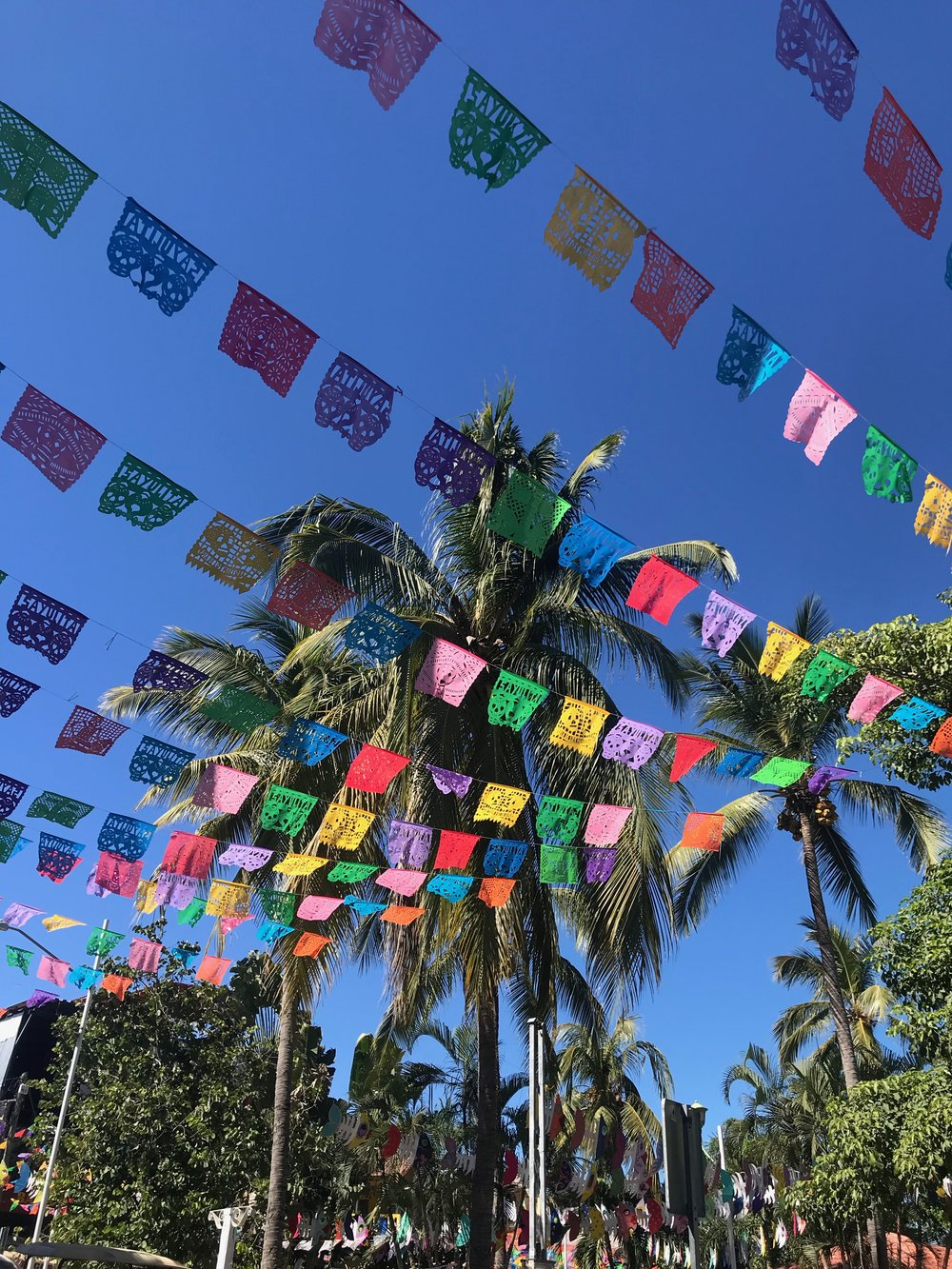 sayulita flags.jpeg