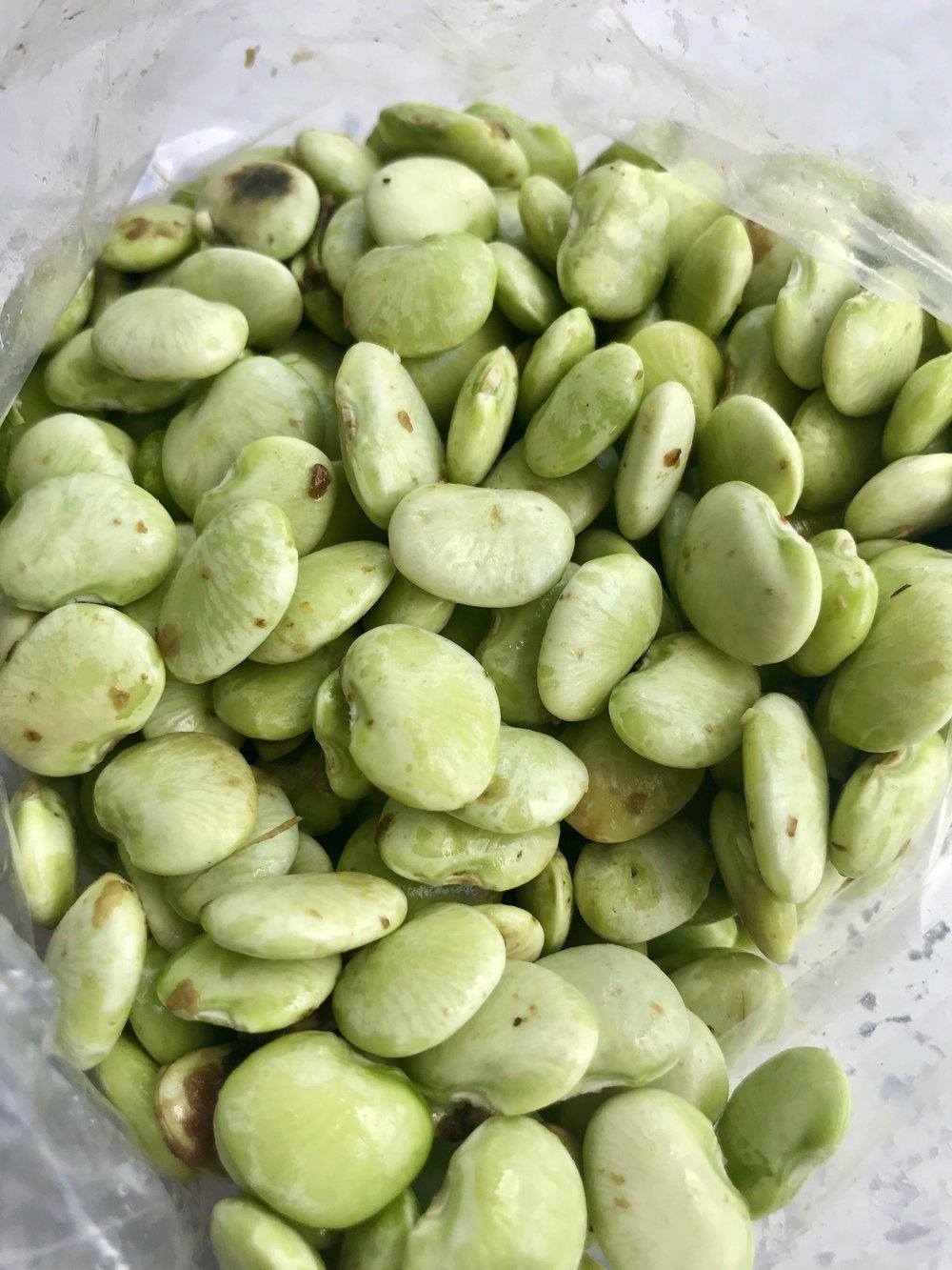 Butter Beans /  Cullman, Alabama
