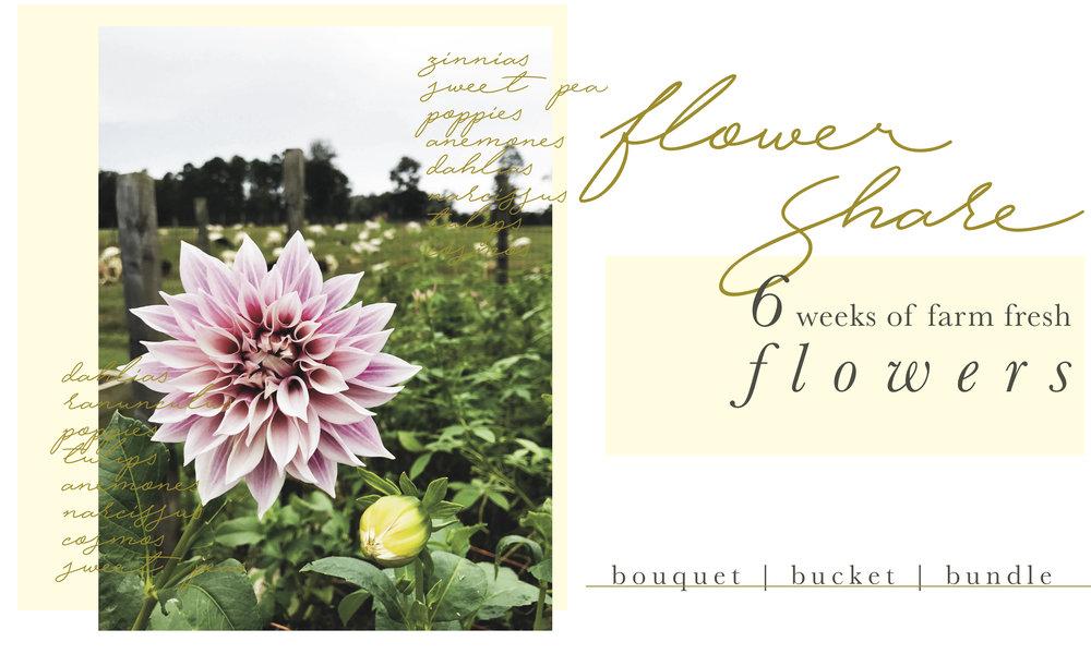 6 week flower share.jpg