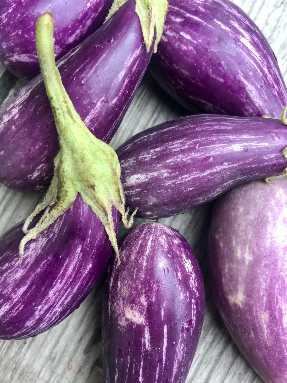 Fairytale Eggplant /  Belle Meadow Farm