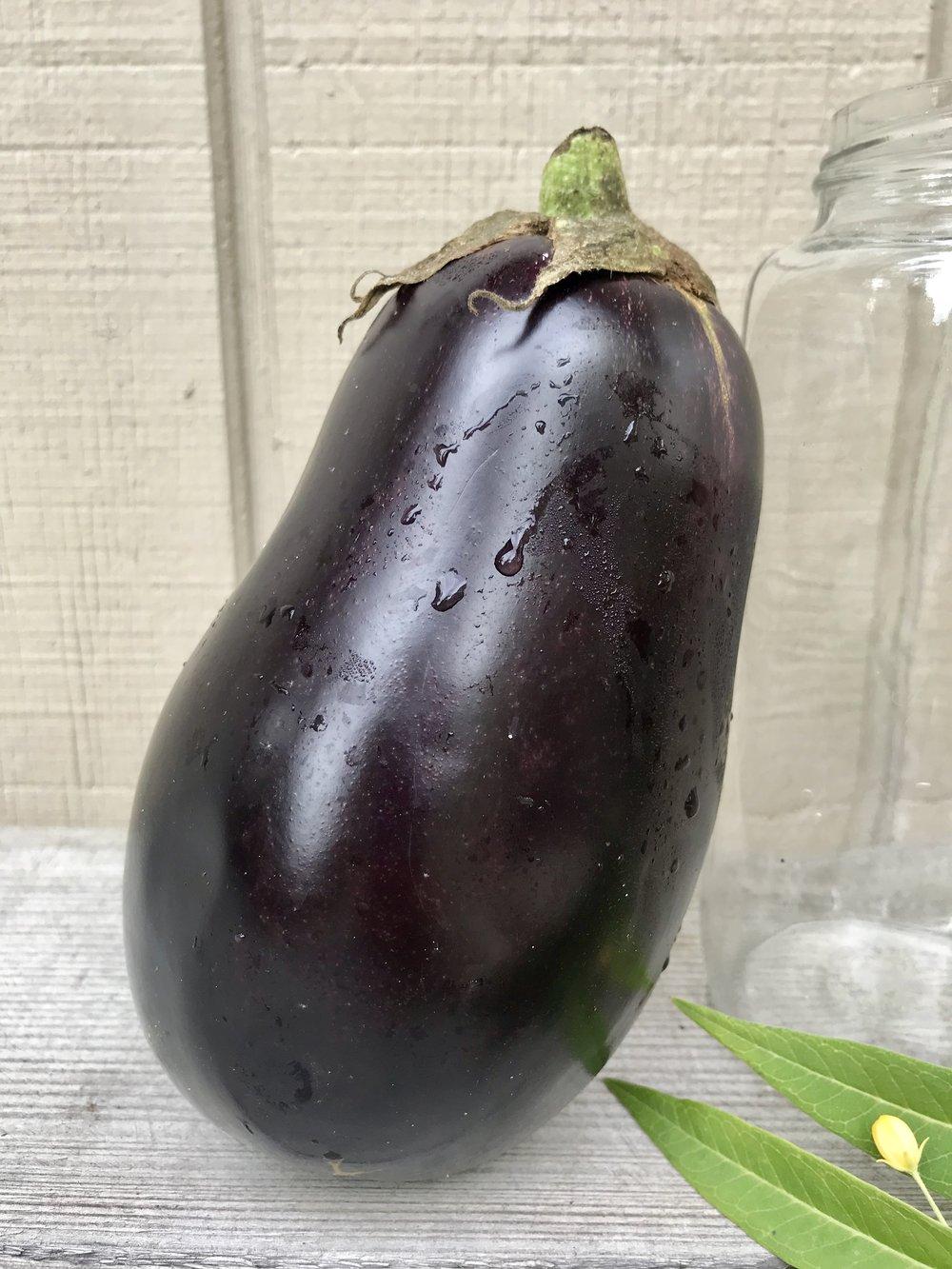 Eggplant /  Sun Up Farms